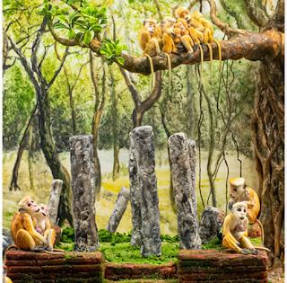 Paysage et macaques Sri Lankais - Shashi Fonseka de The Cake Craze