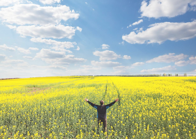 A lady standing in a field with a blue sky above in a post about five daily habits that bring me joy.