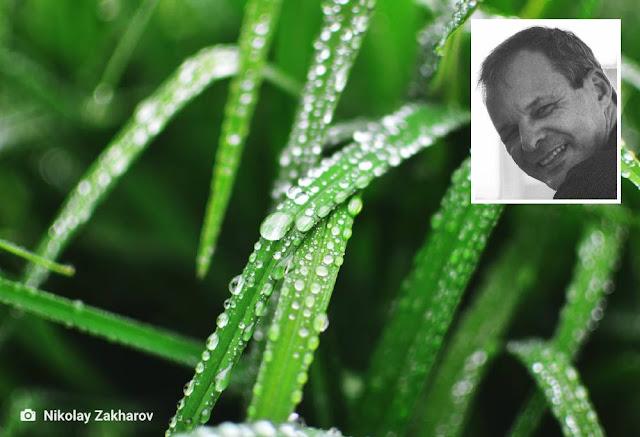 clovis roberto poemas de junho chuva ambiente de leitura carlos romero