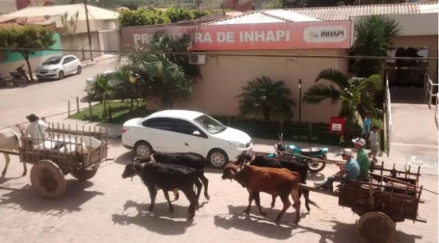 Carreiros de toda região chegam a Inhapi para a tradicional festa de carros de boi