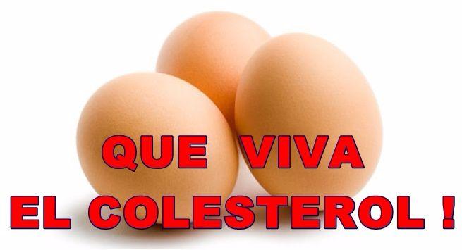 viva-colesterol