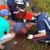 Porto Seguro - Carro atropela e mata entregador de leite na BR-367