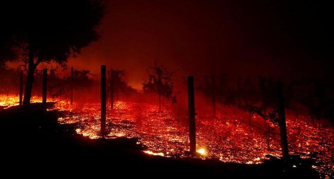 Ngọn lửa cháy rừng cuốn theo những căn biệt thự triệu đô