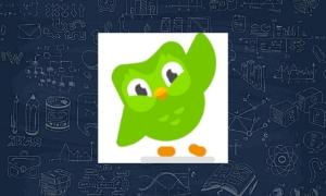6- Duolingo :