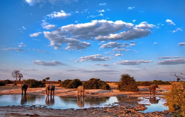 The Best Places to Go in Southern Africa