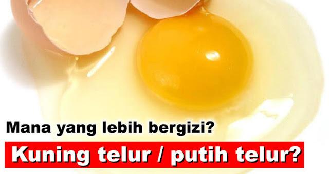 Mana yang lebih bergizi? Kuning telur atau putih telur?