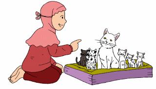 Pertumbuhan Kucing www.simplenews.me