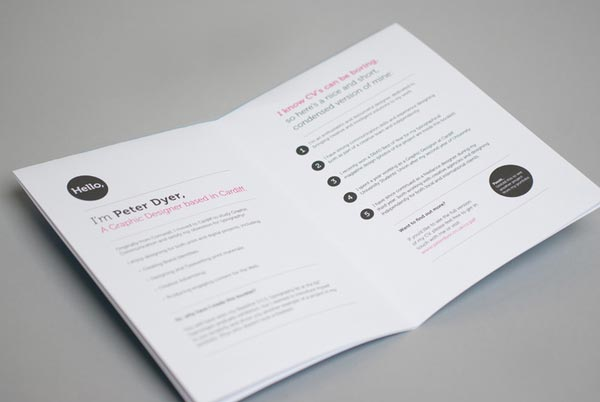15 Examples Of Attractive Graphic Design Resumes CV