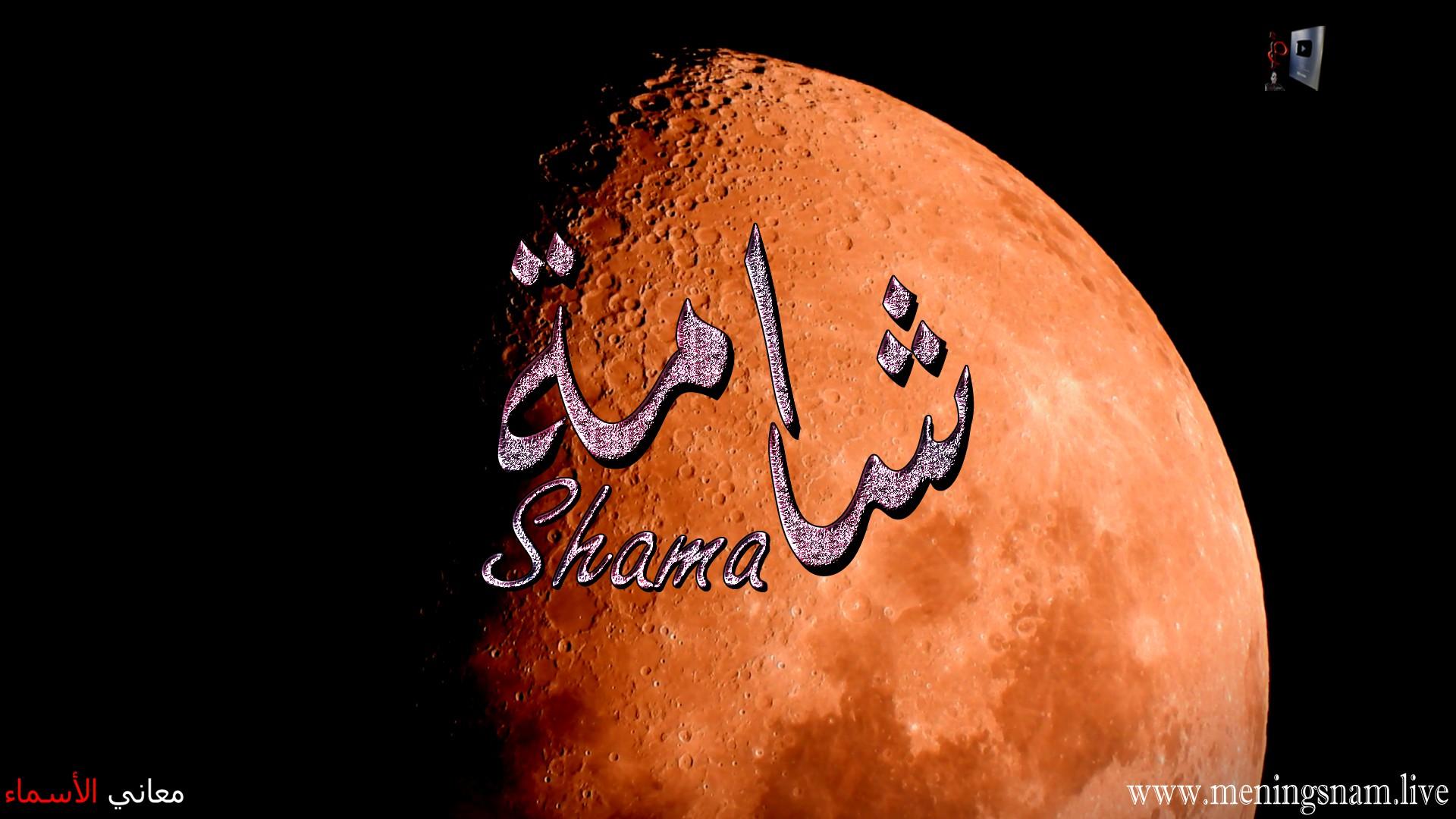 معنى اسم شامة وصفات حاملة هذا الاسم Shama
