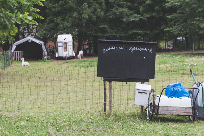 Mathildedalin Kyläalpakat sulostuttavat ruukkialueen miljöötä rauhallisella ja lempeällä läsnäolollaan.