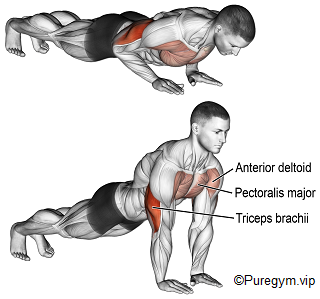 Smart Method to Train Chest at Home