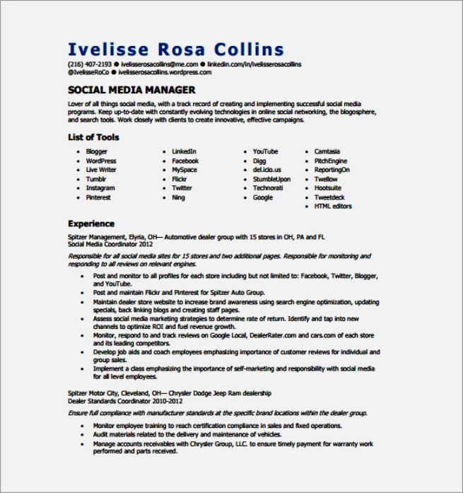 seo executive resume template best resume template
