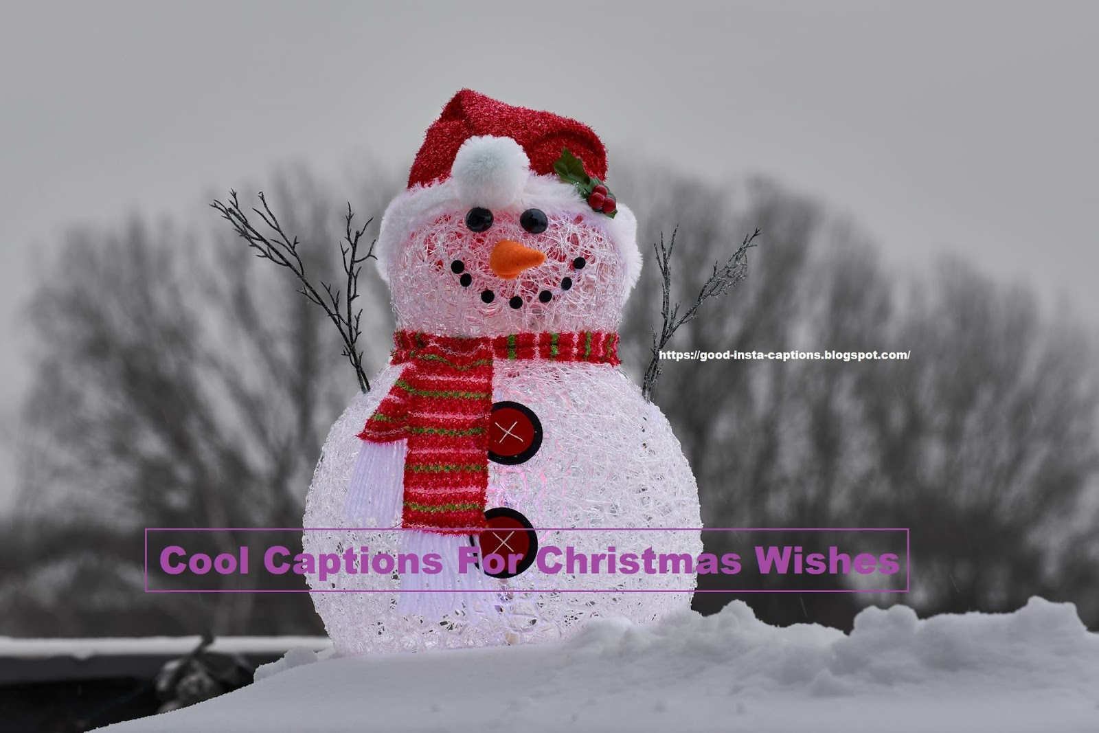Cool Captions For Christmas Wishes