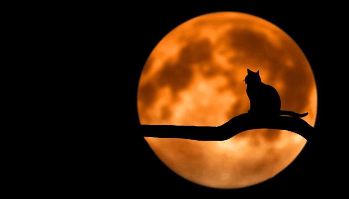 Misteri Bulan Purnama