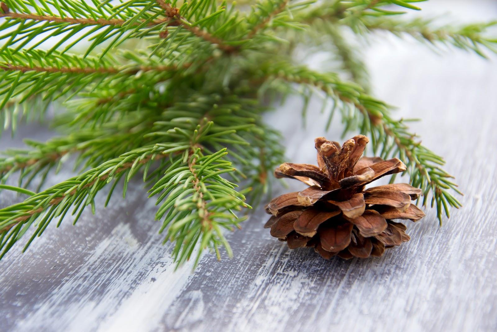 collaboration de Noël entre blogueuse clarasemballe et itsstelicious questions réponses et concours