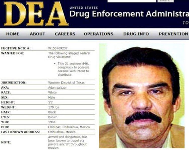 """""""Los Salazar"""", controlan la siembra, producción y trasiego de droga"""