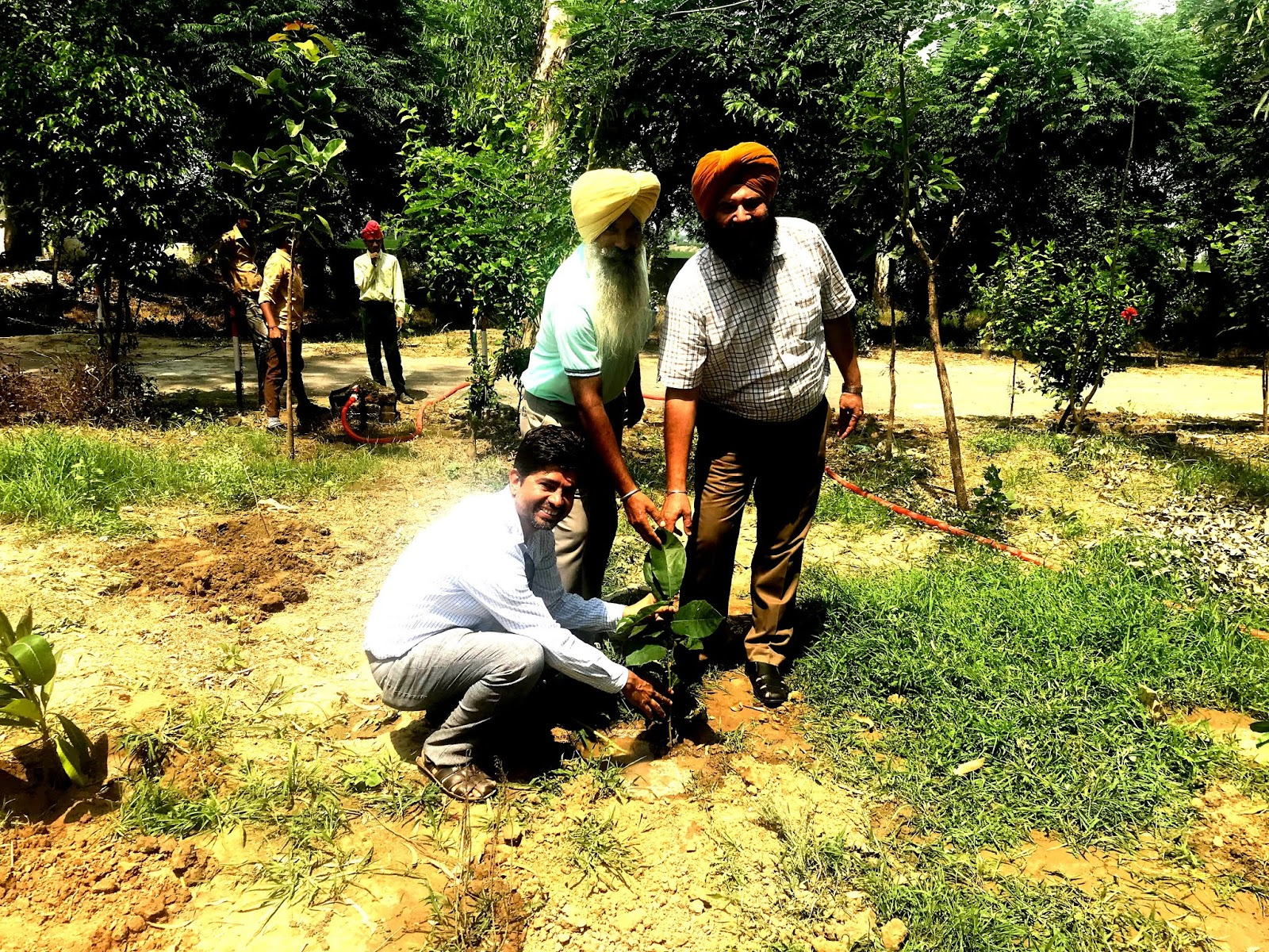Plantation at GHS Bagga Kalan.