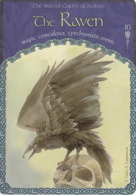 Orakelkaarten: 'The Wisdom of Avalon' - 10. The Raven