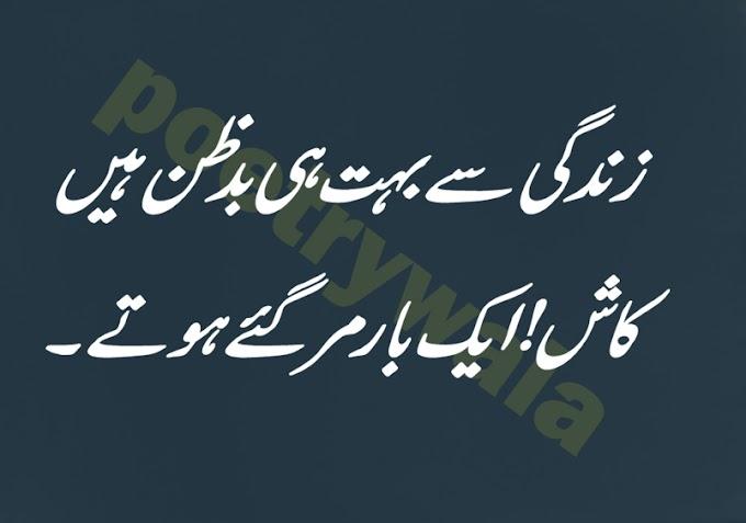زندگی سے بہت ہی بدظن ہیں.urdu sad poetry