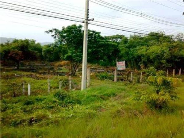 ขายที่ดิน จังหวัดลำปาง อำเภอเมืองลำปาง ตำบลพิชัย 4 ไร่ 3 งาน 51 ตร.ว.