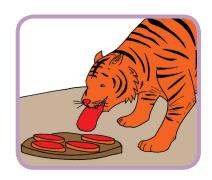 5 bagian daging diberikan untuk harimau www.simplenews.me