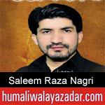 https://humaliwalaazadar.blogspot.com/2019/09/saleem-raza-nagri-nohay-2020.html