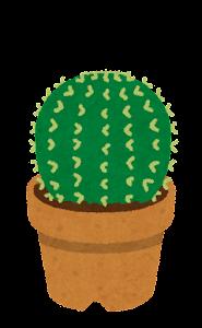 鉢植えのサボテンのイラスト2