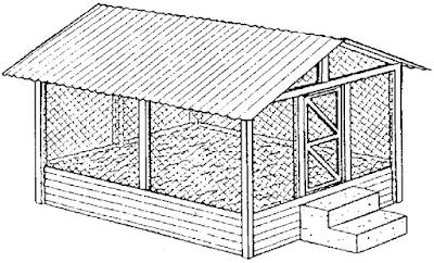 deep litter house for chicken