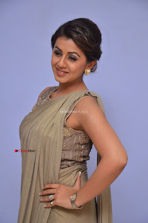 Nikki Galrani in Saree 083.JPG