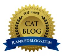 2017 Top Rank Cat Blog
