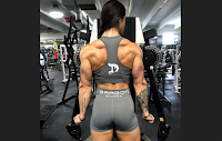 Is There One Perfect Bodybuilding Program? (5 photo)