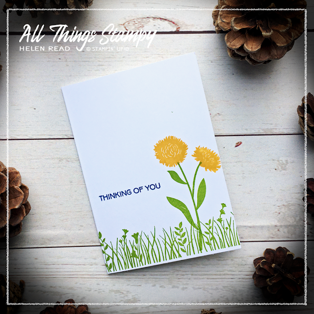 Stampin up Field of Flowers card ideas allthingsstampy helen read