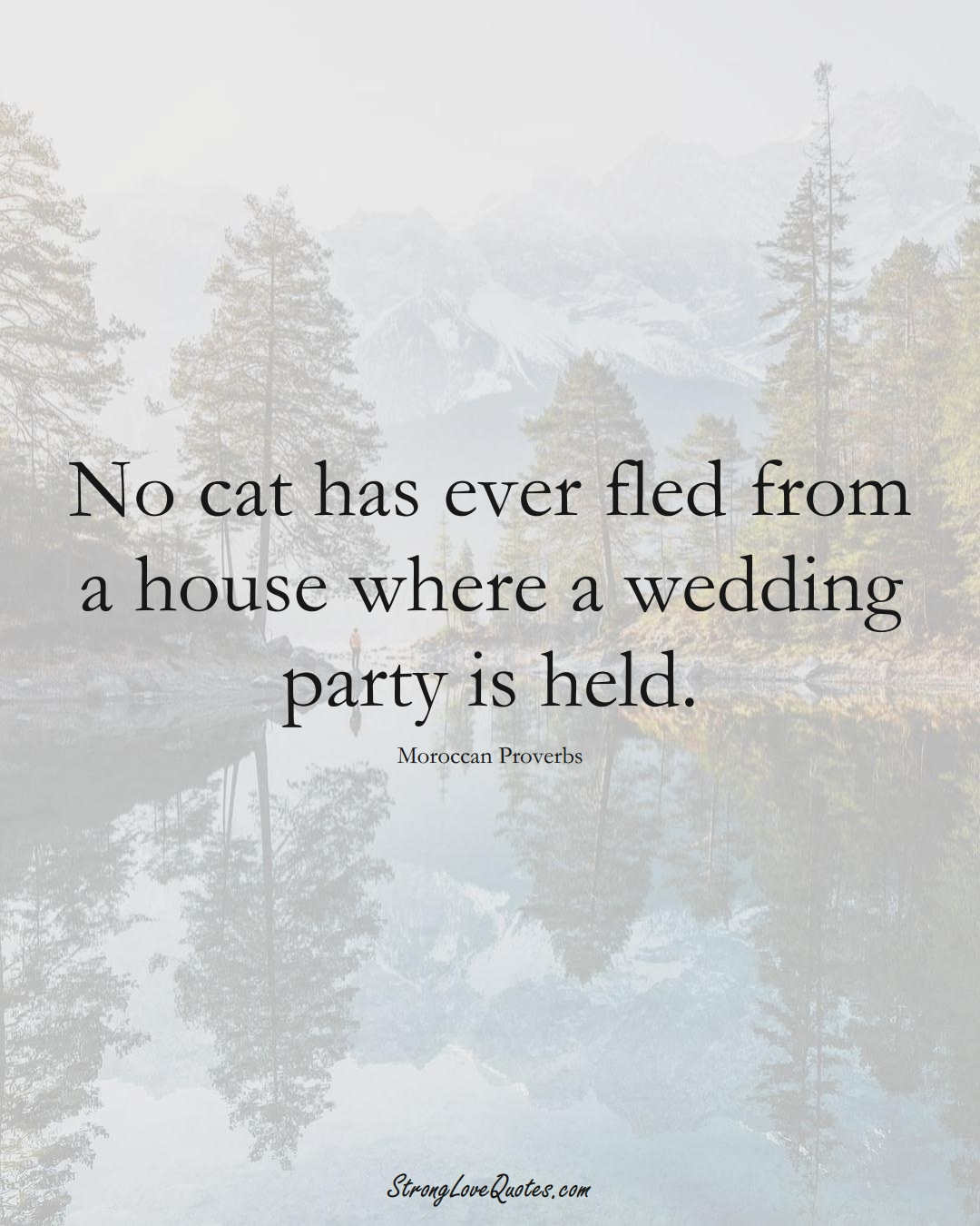 No cat has ever fled from a house where a wedding party is held. (Moroccan Sayings);  #AfricanSayings