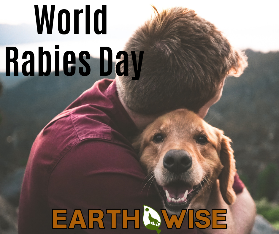 World Rabies Day Wishes For Facebook