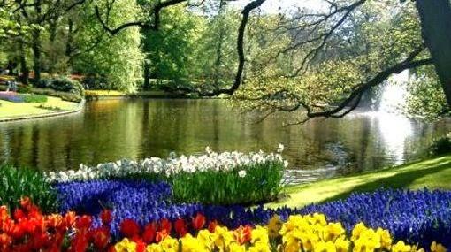 Devoci n en el jard n de la oraci n oraciones poetizadas de la biblia para cada d a y necesidad - El jardin del deseo pendientes ...