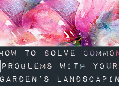 How to Solve Common Problems with Your Garden's Landscaping