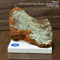 アダム鉱 Adamite Level 5, Mina La Ojuela, Mapimi, Durango, Mexico