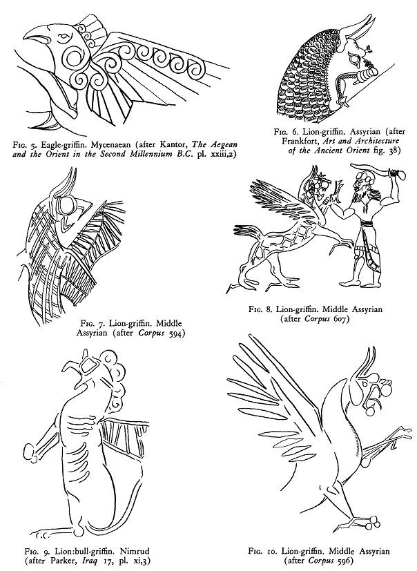 Excepcional Anatomía De Un Pavo Real Ideas - Anatomía de Las ...