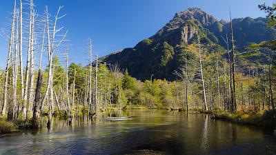 River, mountain, trees, autumn, landscape