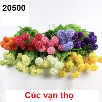 Phu kien hoa pha le o Van Phuc