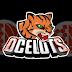 Bola oval: Ocelots estreia na 1ª quinzena de março na SPFL