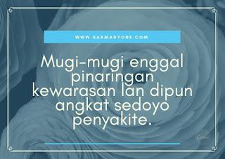 Ucapan Semoga Cepat Sembuh Bahasa Jawa Halus Sakmadyone Com