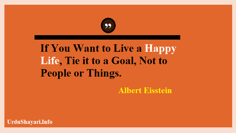 Albert Einstein quote, Happy, Goal quotes best life quotes in English