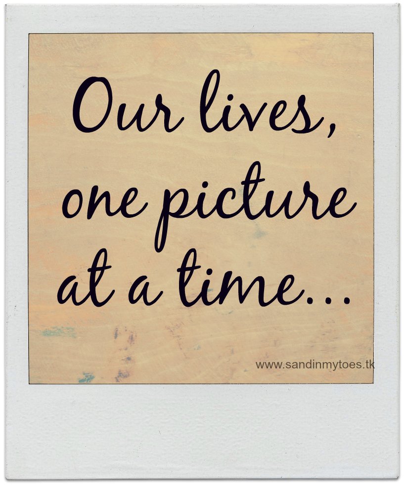 Our lives, one picture at a time - Sand In My Toes