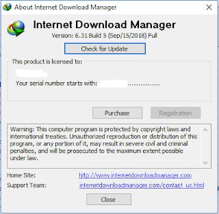 Internet Download Manager 6.31 build 5