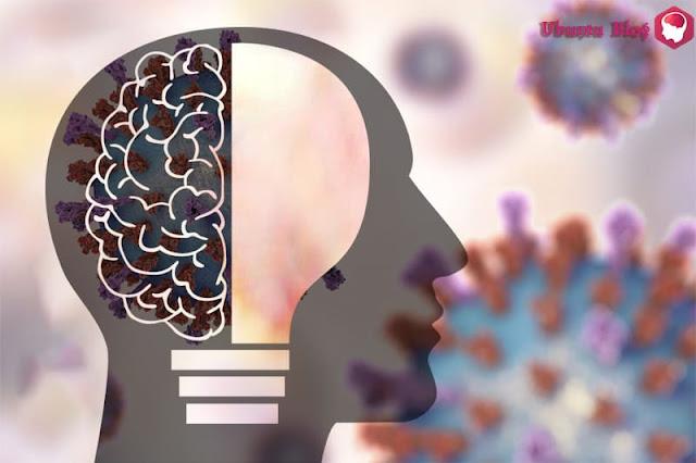 فيروس كورونا والعقول الملعونة: الحقيقة الكبرى وراء هذه الضجة