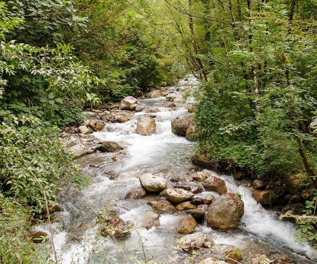 torrente sassi acqua natura