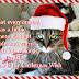Tι επιθυμεί η γατούλα για τα Χριστούγεννα;