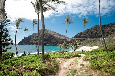 Honolulu Photographer