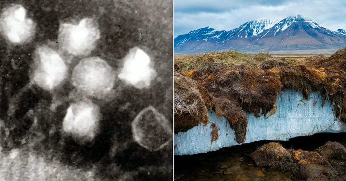 Ancient 15,000-Year-Old Viruses Are Being Revealed In Melting Permafrost